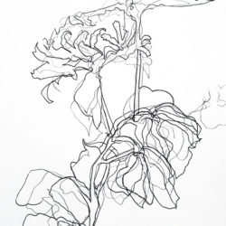 Fairies also like flowers