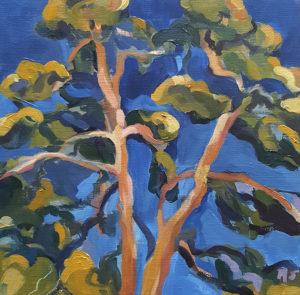 energizing blue pine