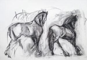 friesan horses