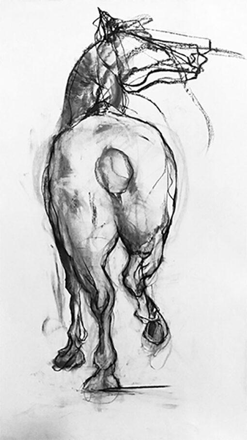 equestrian art art équestre equine art un cheval de dos qui part au trop e horse who trots seen from the back