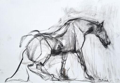 a horse is halfway down un cheval est à moitié tombé ou debout
