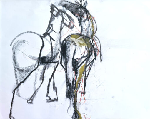 two horses from the back playing together - deux chevaux de dos qui jouent ensemble
