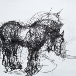 a horse with ink on paper that turns around